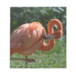 Perfect Pink Flamingo Notepad