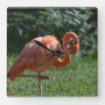 Perfect Pink Flamingo Square Wall Clock