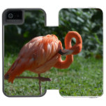 Perfect Pink Flamingo Wallet Case For iPhone SE/5/5s