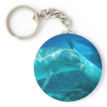 Playful Dolphins Keychain
