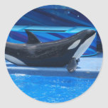 Posing Orca Stickers