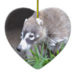 Prowling Coati Ceramic Ornament