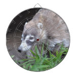 Prowling Coati Dartboard With Darts