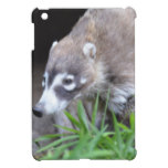 Prowling Coati iPad Mini Cover