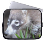 Prowling Coati Laptop Sleeve