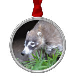 Prowling Coati Metal Ornament