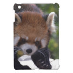 Prowling Red Panda Case For The iPad Mini