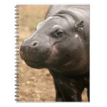 Pygmy Hippo Notebook