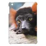 Resting Red Ruffed Lemur Case For The iPad Mini