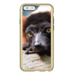 Resting Red Ruffed Lemur Incipio Feather Shine iPhone 6 Case