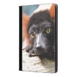 Resting Red Ruffed Lemur iPad Air Case
