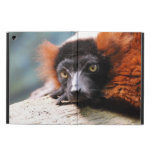 Resting Red Ruffed Lemur iPad Air Cover