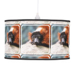 Resting Red Ruffed Lemur Pendant Lamp