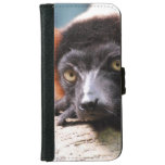 Resting Red Ruffed Lemur Wallet Phone Case For iPhone 6/6s
