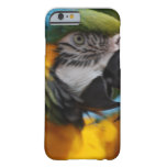 Ruffled Blue and Gold Macaw Barely There iPhone 6 Case