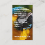 Ruffled Blue and Gold Macaw Business Card