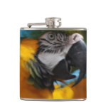 Ruffled Blue and Gold Macaw Flask