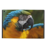 Ruffled Blue and Gold Macaw iPad Air Case