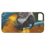 Ruffled Blue and Gold Macaw iPhone SE/5/5s Case