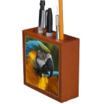 Ruffled Blue and Gold Macaw Pencil/Pen Holder