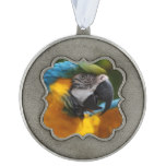 Ruffled Blue and Gold Macaw Pewter Ornament