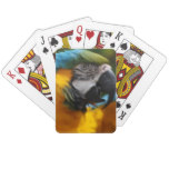 Ruffled Blue and Gold Macaw Playing Cards