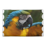 Ruffled Blue and Gold Macaw Travel Accessory Bag