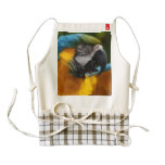 Ruffled Blue and Gold Macaw Zazzle HEART Apron