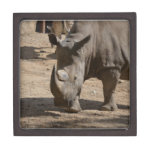 Rutting Rhino Jewelry Box