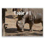 Rutting Rhino Table Number