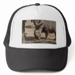 Rutting Rhino Trucker Hat