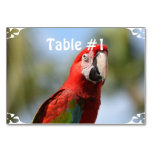 Scarlet Red Macaw Table Number
