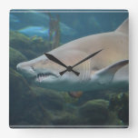 Scary Great White Shark Square Wall Clock