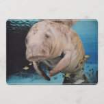 Sea Cow Swimming Invitation