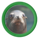 Sea Lion with Whiskers Set Of Poker Chips