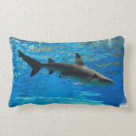shark-54.jpg lumbar pillow
