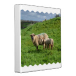 Sheep Family 3 Ring Binder