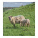 Sheep Family Bandana