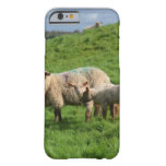 Sheep Family Barely There iPhone 6 Case