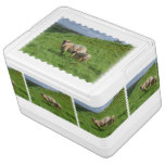 Sheep Family Drink Cooler