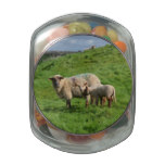 Sheep Family Glass Candy Jars
