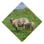 Sheep Family Graduation Cap Topper