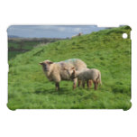 Sheep Family iPad Mini Covers