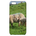 Sheep Family iPhone 5C Case