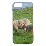 Sheep Family iPhone 7 Case
