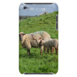 Sheep Family iPod Touch Cover