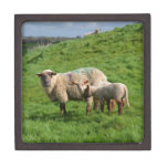 Sheep Family Keepsake Box