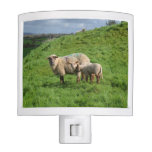 Sheep Family Night Light