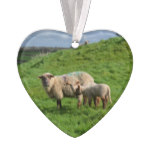 Sheep Family Ornament