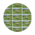 Sheep Family Paper Plate